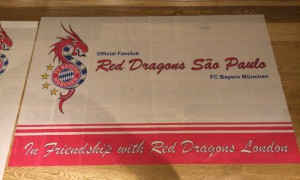 Red Dragons Chapters